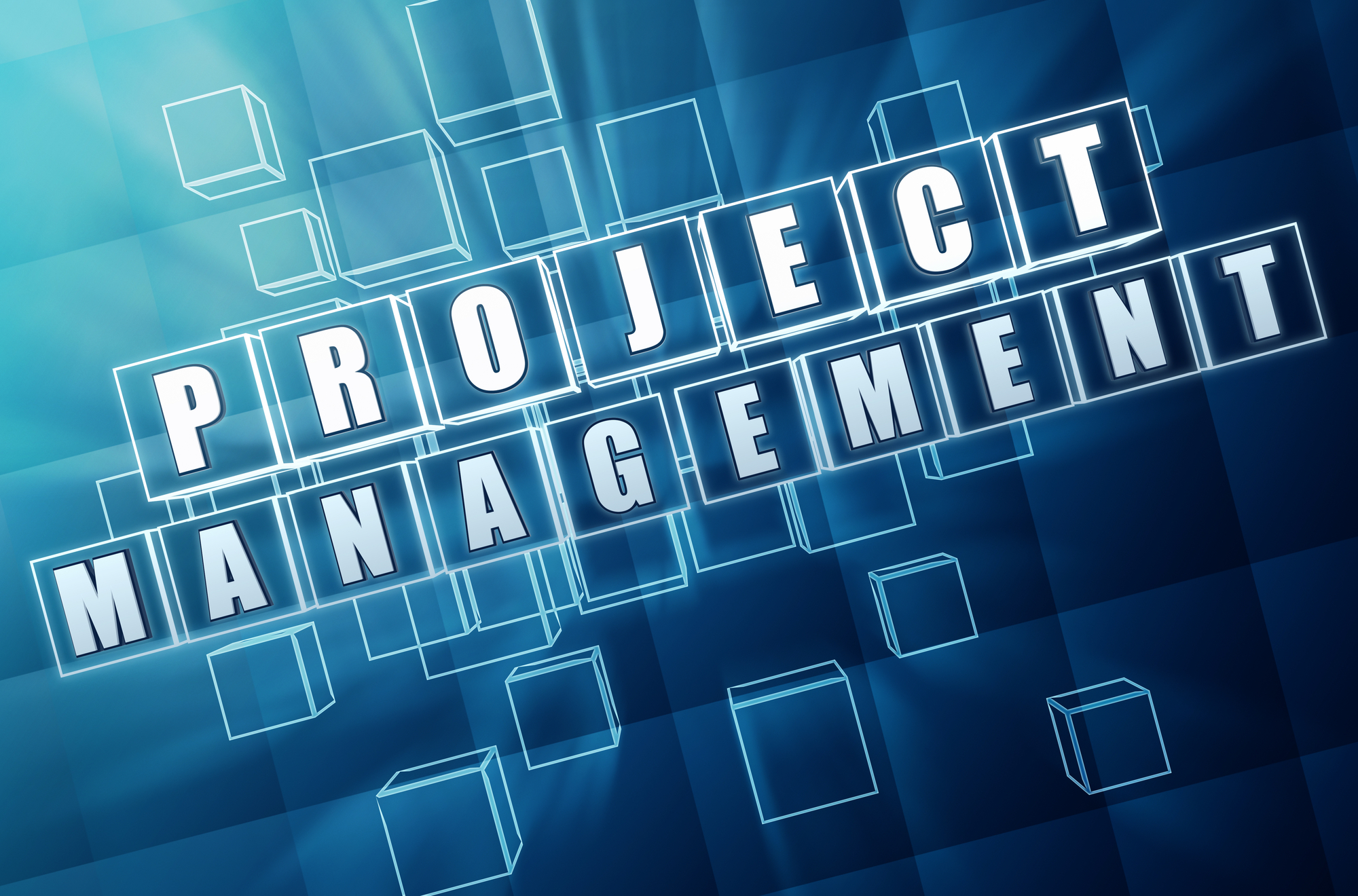 One of the most important elements of successful drug substance project onboarding is project management.
